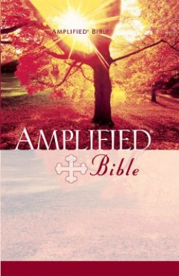 Amplified Bible - Paperback